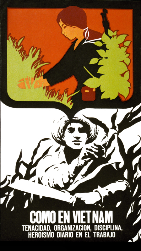Come en Viet Nam poster